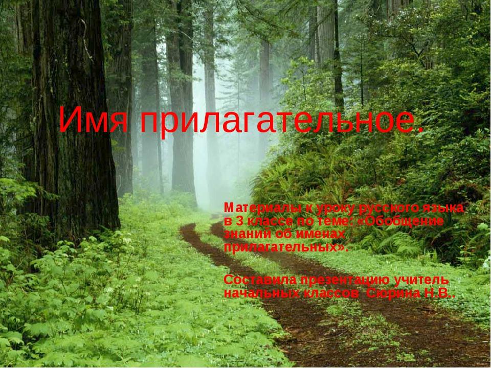 Имя прилагательное. Материалы к уроку русского языка в 3 классе по теме: «Обо...
