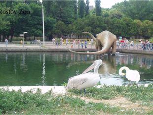 The Rostov Zoo