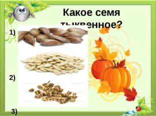 Какое семя тыквенное? 1) 2) 3)