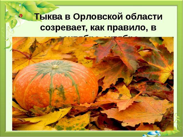 Тыква в Орловской области созревает, как правило, в сентябре-октябре