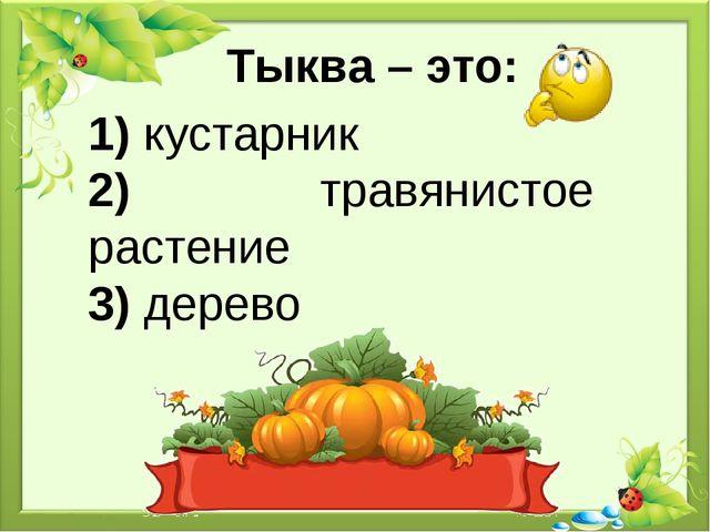 Тыква – это: 1) кустарник 2) травянистое растение 3) дерево