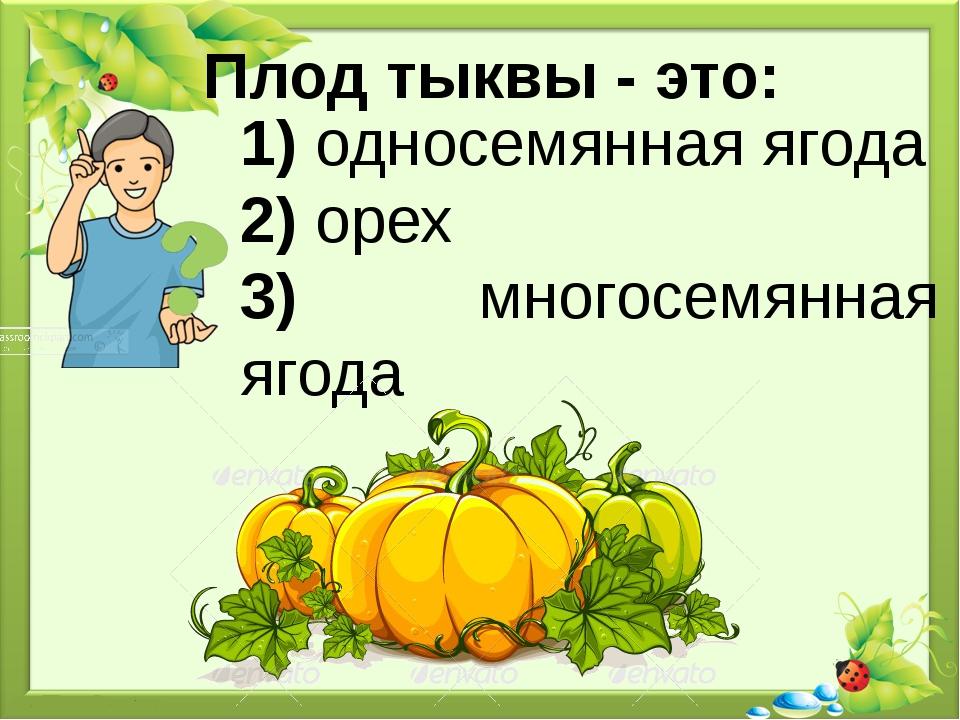 Плод тыквы - это: 1) односемянная ягода 2) орех 3) многосемянная ягода