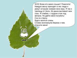 SOS! Всем кто меня слышит! Помогите! Каждую весну приходят в лес люди и режут