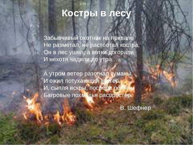 Костры в лесу Забывчивый охотник на привале Не разметал, не растоптал костра,...