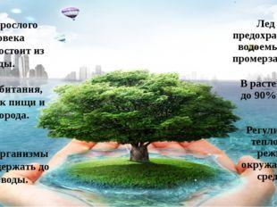 В растениях - до 90% воды. Регулирует тепловой режим окружающей среды. Тело в