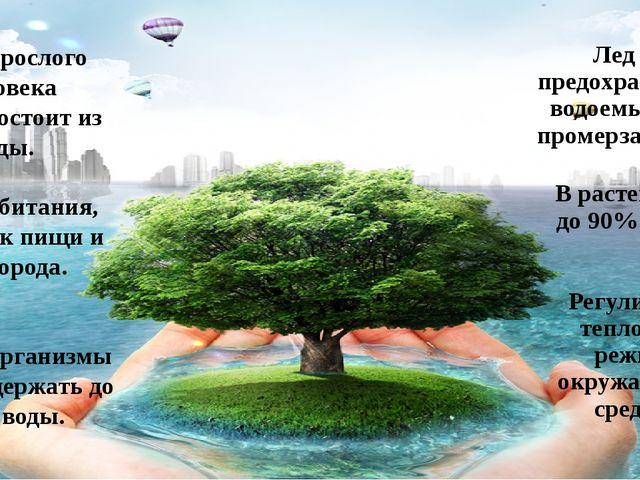 В растениях - до 90% воды. Регулирует тепловой режим окружающей среды. Тело в...