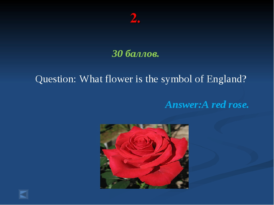 2. 30 баллов. Question: What flower is the symbol of England? Answer:A red ro...