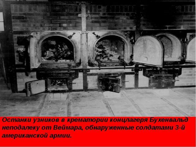 Останки узников в крематории концлагеря Бухенвальд неподалеку от Веймара, обн...