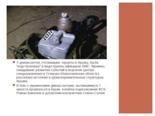 """У диверсантов, готовивших теракты в Крыму, была """"подстраховка"""" в виде группы"""