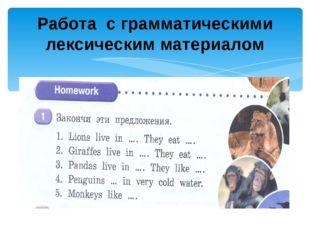 Работа с грамматическими лексическим материалом