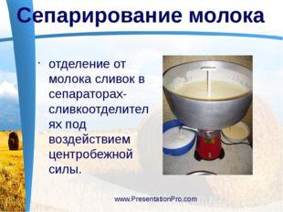отделение от молока сливок в сепараторах-сливкоотделителях под воздействием