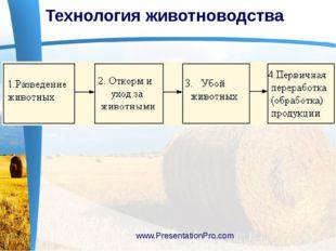 Технология животноводства www.PresentationPro.com