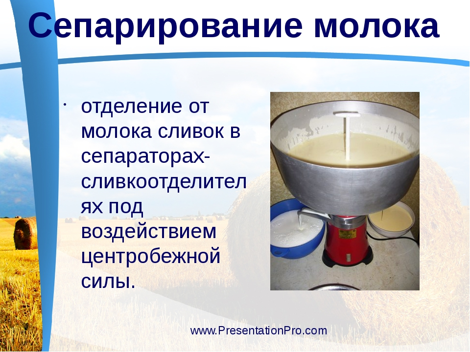 отделение от молока сливок в сепараторах-сливкоотделителях под воздействием...