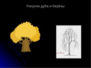 Рисунок дуба и берёзы