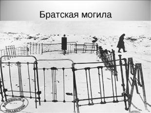 Братская могила