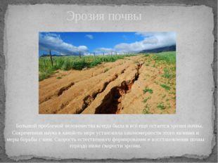 Большой проблемой человечества всегда была и всё ещё остаётсяэрозия почвы.