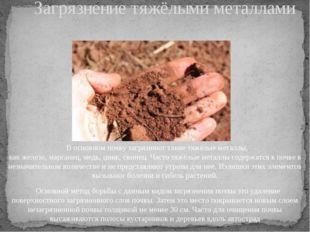 В основном почву загрязняют такие тяжёлые металлы, какжелезо,марганец,мед