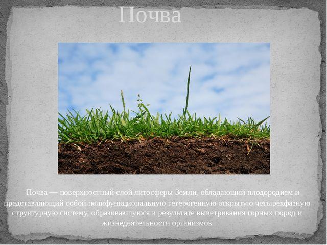 Почва— поверхностный слойлитосферыЗемли, обладающийплодородиеми предста...