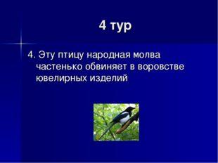 4 тур 4. Эту птицу народная молва частенько обвиняет в воровстве ювелирных из
