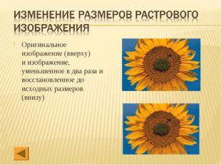 Оригинальное изображение (вверху) и изображение, уменьшенное в два раза и вос