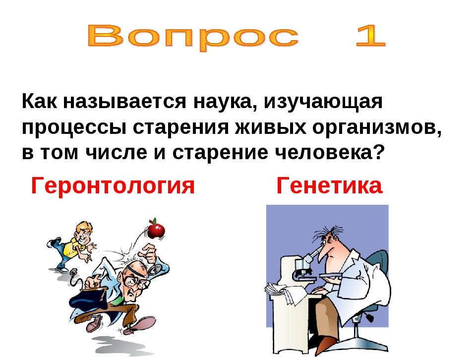 Как называется наука, изучающая процессы старения живых организмов, в том чис...