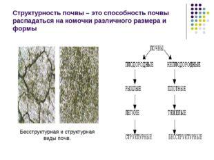 Структурность почвы – это способность почвы распадаться на комочки различного