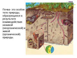 Почва- это особое тело природы, образующееся в результате взаимодействия нежи