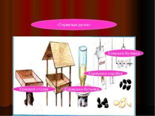 «Очумелые ручки» Комушка-булавка Кормушка-коробка Кормушка-бутылка Крмовой ст