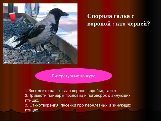 Спорила галка с вороной : кто черней? Птичка - невеличка ножки имеет, а ходит...