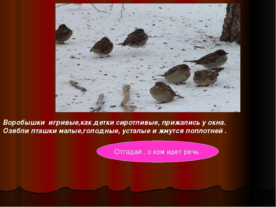 Воробышки игривые,как детки сиротливые, прижались у окна. Озябли пташки малые...