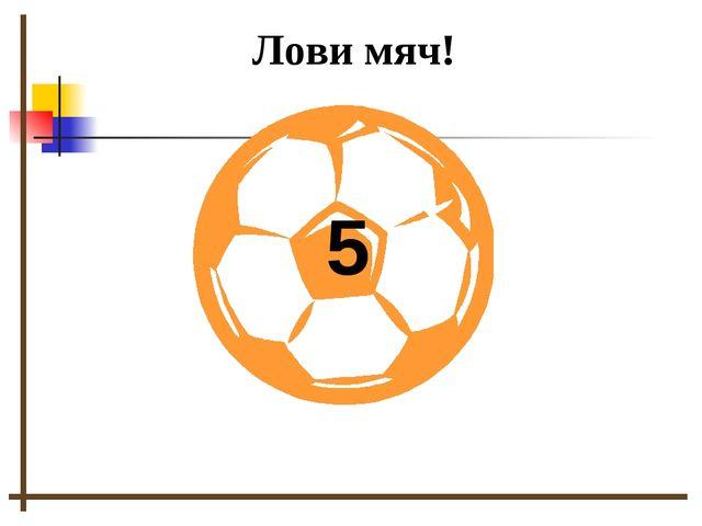 5 Лови мяч!