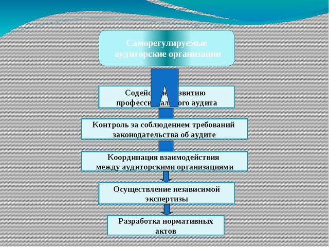 Саморегулируемые аудиторские организации Содействие развитию профессиональног...