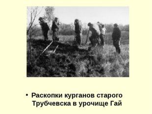 Раскопки курганов старого Трубчевска в урочище Гай