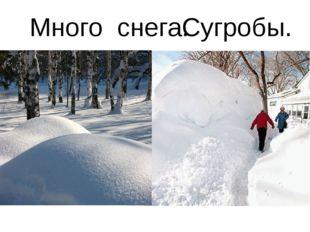 Много снега. Сугробы.