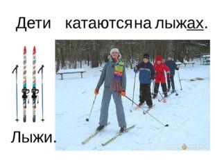 Лыжи. Дети катаются на лыжах.