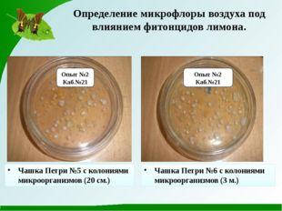 Опыт №2 Каб.№21 Опыт №2 Каб.№21 Чашка Петри №5 с колониями микроорганизмов (