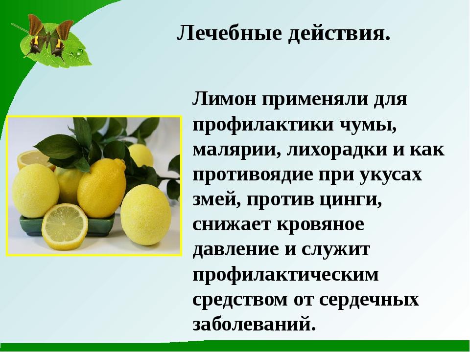 Лечебные действия. Лимон применяли для профилактики чумы, малярии, лихорадки...
