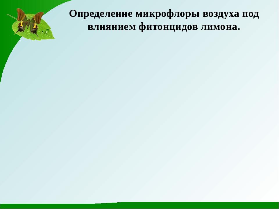 Определение микрофлоры воздуха под влиянием фитонцидов лимона.