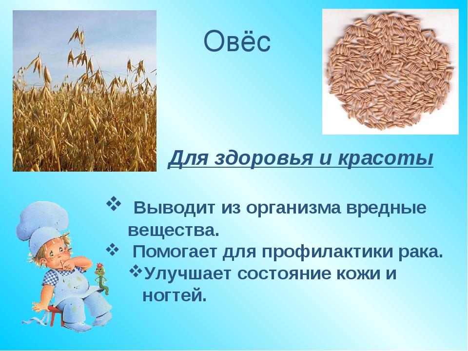 Овёс Для здоровья и красоты Выводит из организма вредные вещества. Помогает д...