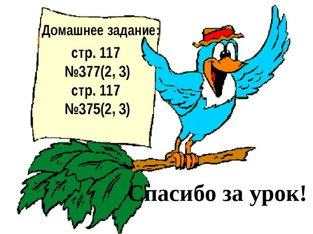Домашнее задание: стр. 117 №377(2, 3) стр. 117 №375(2, 3) Спасибо за урок!