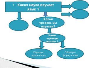 1. Какая наука изучает язык ? Какой уровень мы изучаем? Какие единицы изучает