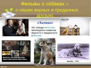 Фильмы о собаках – о наших верных и преданных друзьях. «Хатико» пёс породыа