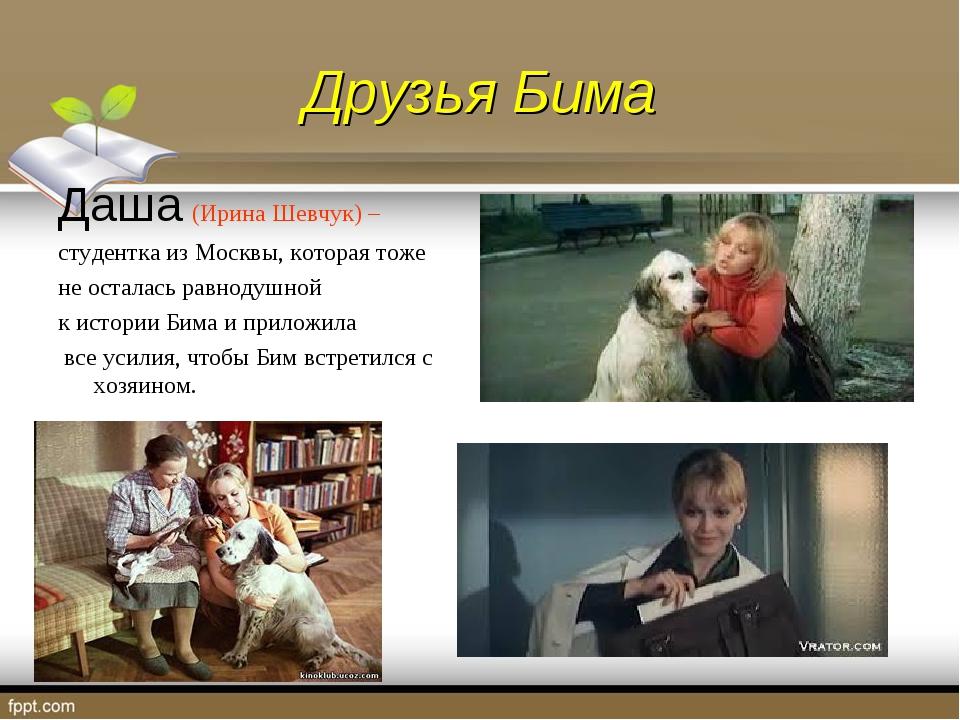 Друзья Бима Даша (Ирина Шевчук) – студентка из Москвы, которая тоже не остала...