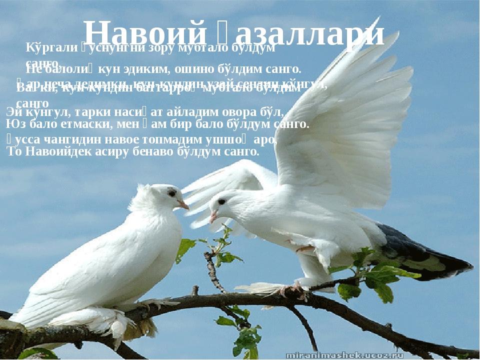 Навоий ғазаллари Кўргали ҳуснунгни зору мубтало бўлдум санго, Не балолиғ кун...