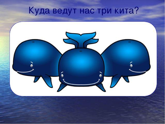 Куда ведут нас три кита?