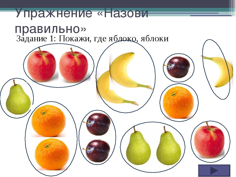 Упражнение «Назови правильно» Задание 1: Покажи, где яблоко, яблоки