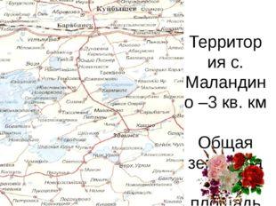 Территория с. Маландино –3 кв. км Общая земельная площадь – 9 824 га
