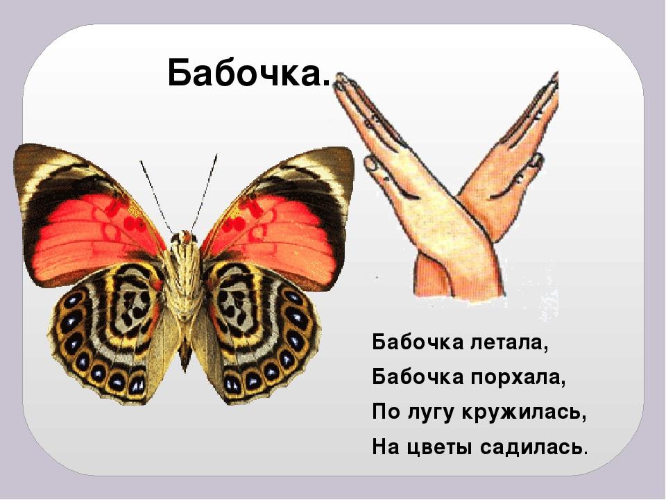Бабочка летала, Бабочка порхала, По лугу кружилась, На цветы садилась. Бабочка.