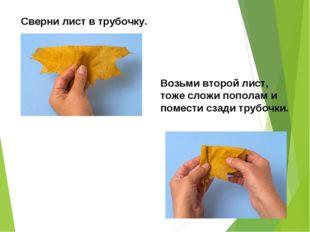 Сверни лист в трубочку. Возьми второй лист, тоже сложи пополам и помести сзад