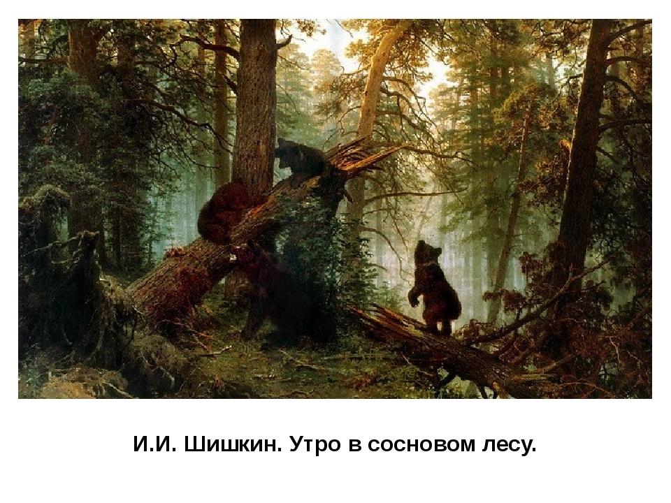И.И. Шишкин. Утро в сосновом лесу. В своих картинах Шишкин радуется могучей с...
